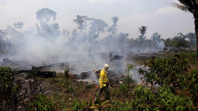 巴西:部分亚马孙雨林仍在燃烧