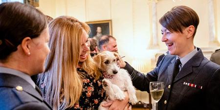 英首相约翰逊设宴招待军事人员 女友和宠物狗亮相